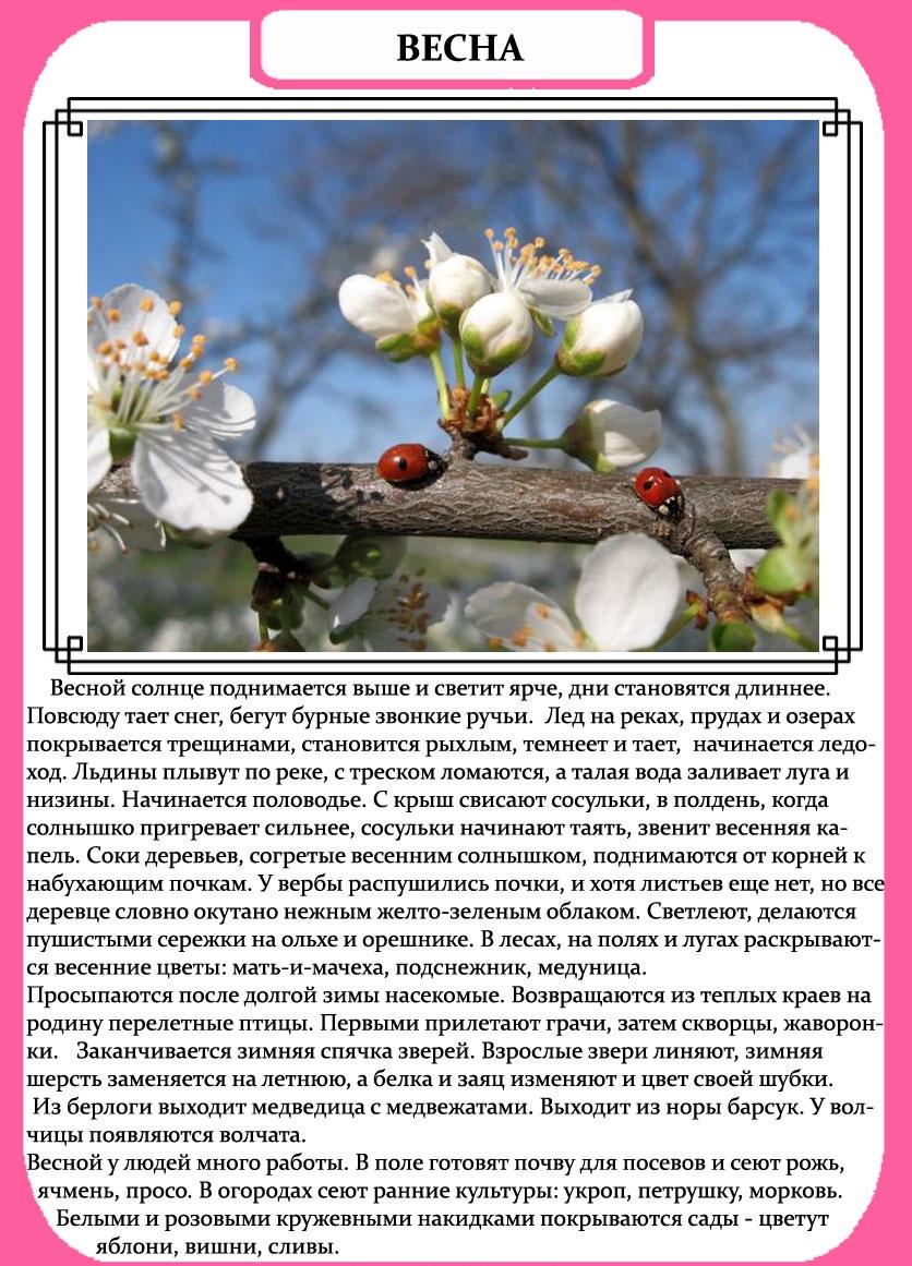 Открытки день, весна картинка с текстом