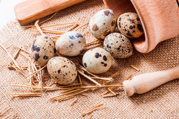 Как варить перепелиные яйца – все тонкости и секреты