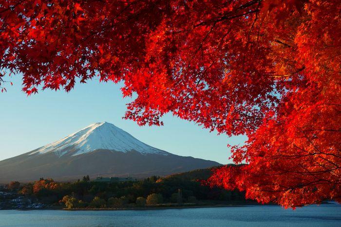 Японские пословицы и поговорки