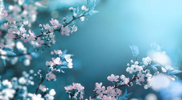 Пословицы и поговорки про апрель